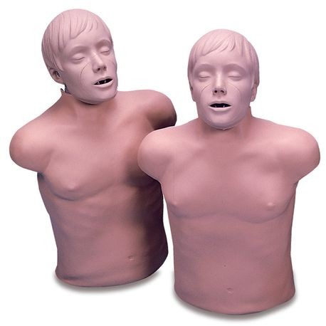 CPR Adult - Lifelike/Torso