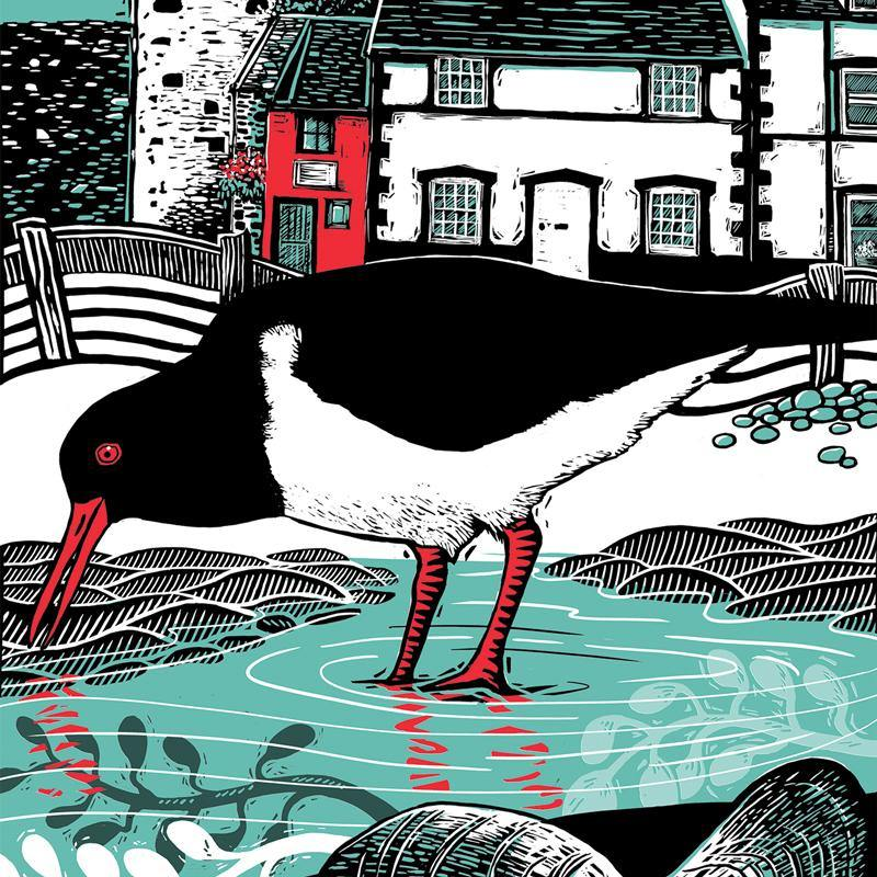 Conwy Oystercatcher Greeting Card by Fox & Boo