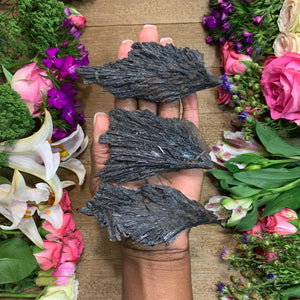 Large Black Kyanite Fan - Chakra Zulu