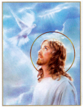 Jesus and the Holy Spirit Poster