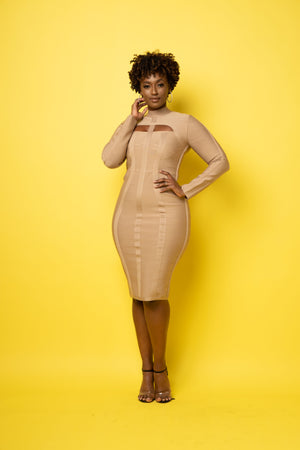 Erin Bandage Midi Dress