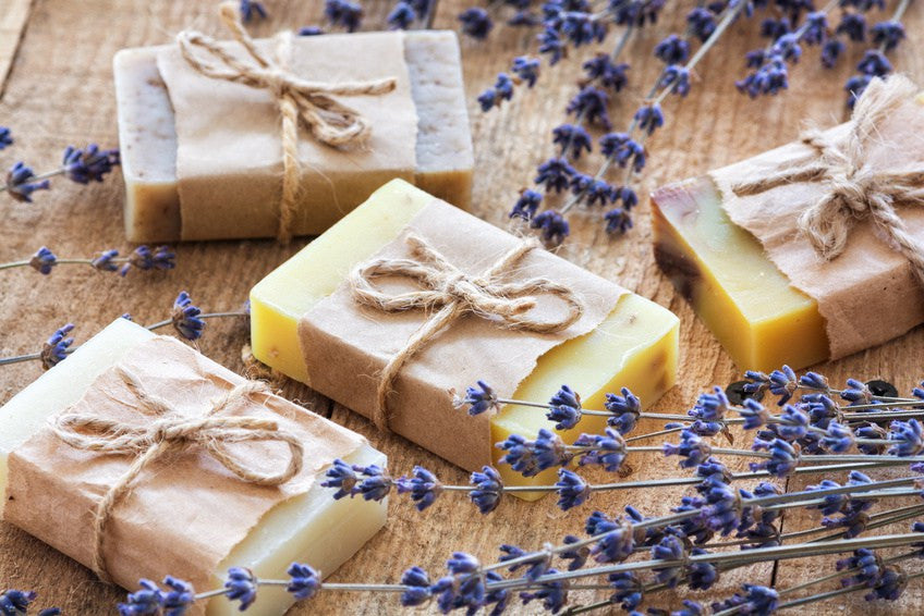 FREE SOAP PLUS SHIPPING