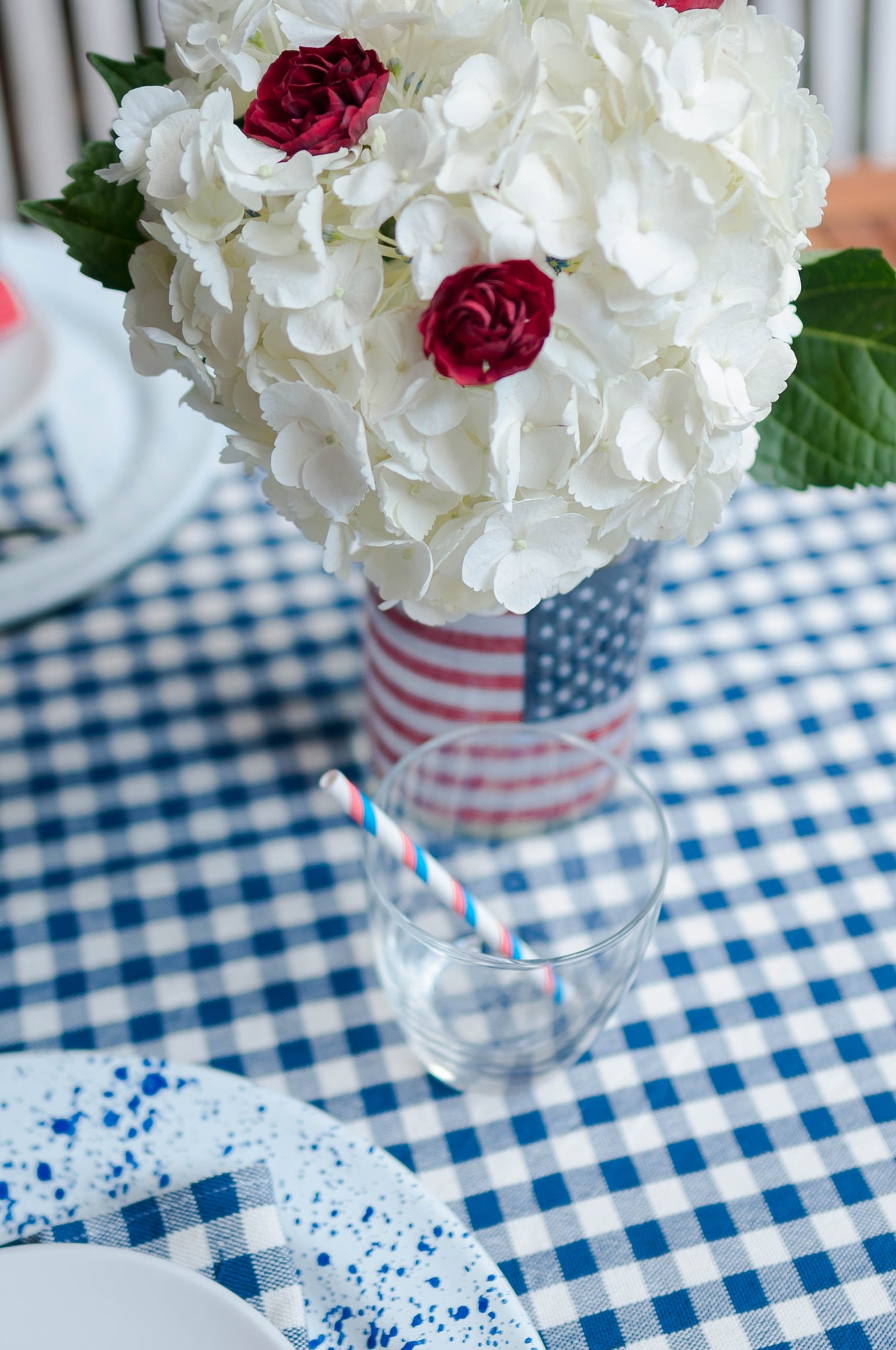 Party Decoration Gingham Outdoor 4th of July