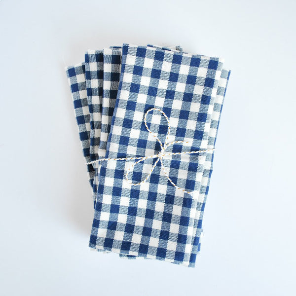 Spring Essentials Blue Gingham Napkins
