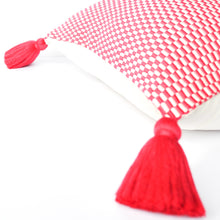 Load image into Gallery viewer, pink handmade peruvian pillow with single tassel and down insert