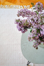 Load image into Gallery viewer, Light Pink 5'x'8 Accent Rug