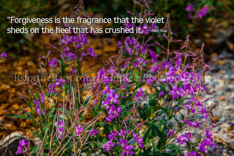 Forgiveness is the fragrance that the violet sheds on the heel that has crushed it.