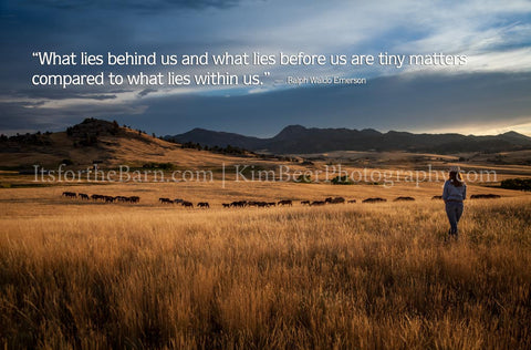 What lies behind us and what lies before us are tiny matters...