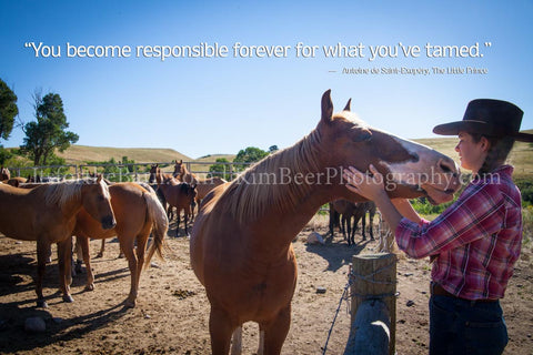 You become responsible forever for what you've tamed.