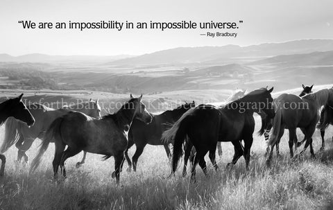We are an impossibility in an impossible universe.)