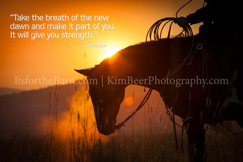 Take the breath of the new dawn and make it part of you, it will give you strength.