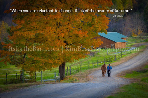 When you are reluctant to change, thing of the beauty of Autumn.