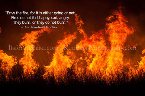 Envy the fire, for it is either going or not. Fires do not feel happy, sad, angry.