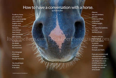 How to Have a Conversation with a Horse