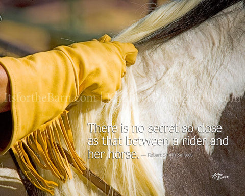 There is no secret so close as that between a rider and her horse.