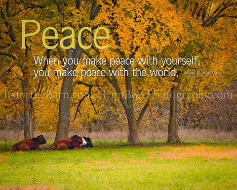 When you make peace with yourself, you make peace with the world.