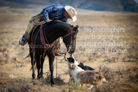 No Philosophers so thoroughly comprehend us as dogs and horses.