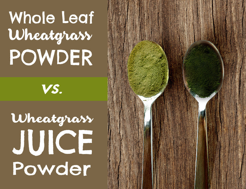 Whole Leaf Wheatgrass Powder vs. Wheatgrass Juice Powder