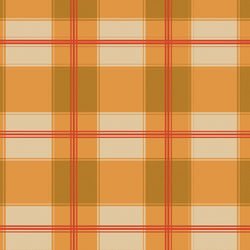 """Pumpkin Wide Plaid 2"" Permanent Adhesive Vinyl and Heat Transfer Vinyl"