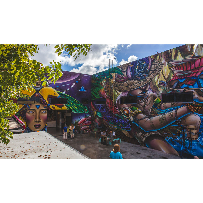 What To Do In Wynwood