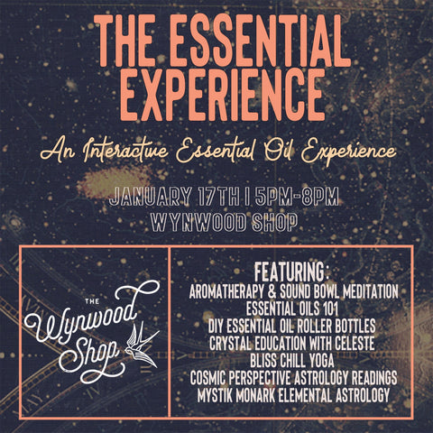 Wynwood Shop The Essential Experience