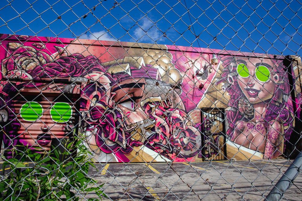 Sofles Wynwood Art Week Murals