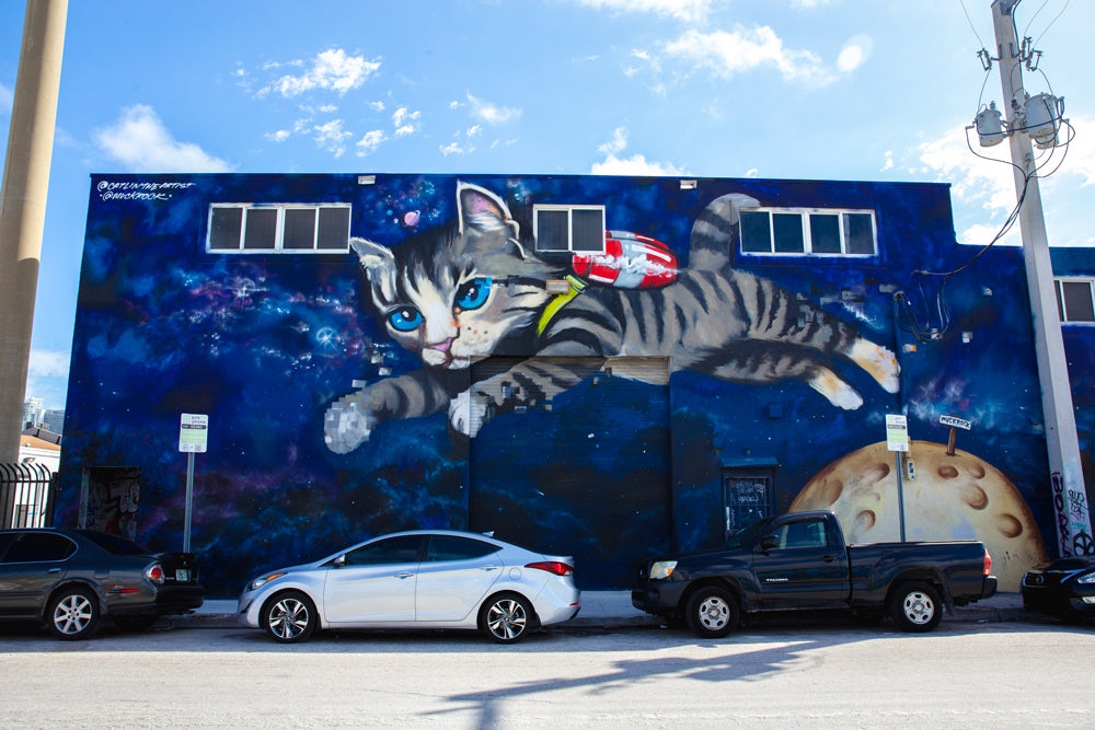 The Space Soaring Cat at Fun Dimension Wynwood