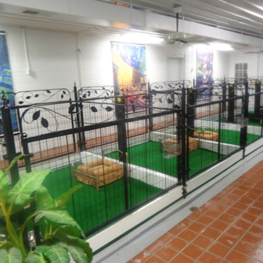 Boarding Kennel Owners, Managers, & Staff