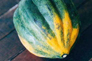 Acorn Squash - Full Belly Farm