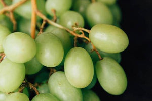 Green Grapes (lb) - Sunview/Anthony Vineyards