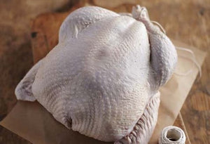Heritage Small Mary's Bird (7-14 lbs) Turkey Deposit