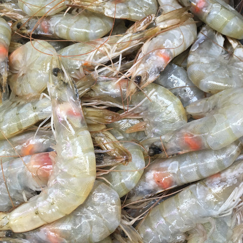 SHRIMP (HEAD ON) 50/60 蝦 (有頭) 50/60