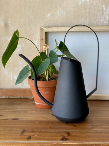 Siren Watering Can