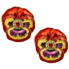 Pretty Pansy Flower Button Earrings For Women