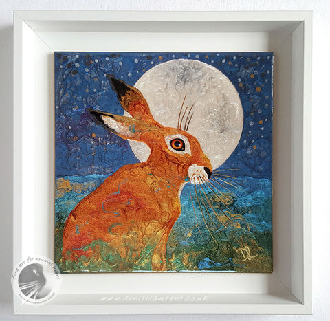 hare in a floater frame
