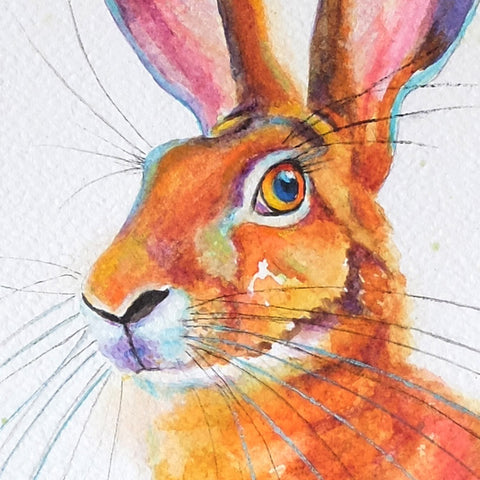 hare face in watercolour