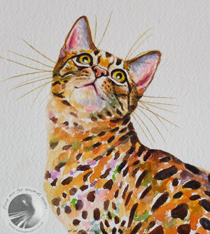 "Bella - 18""x14"" Watercolour Painting"