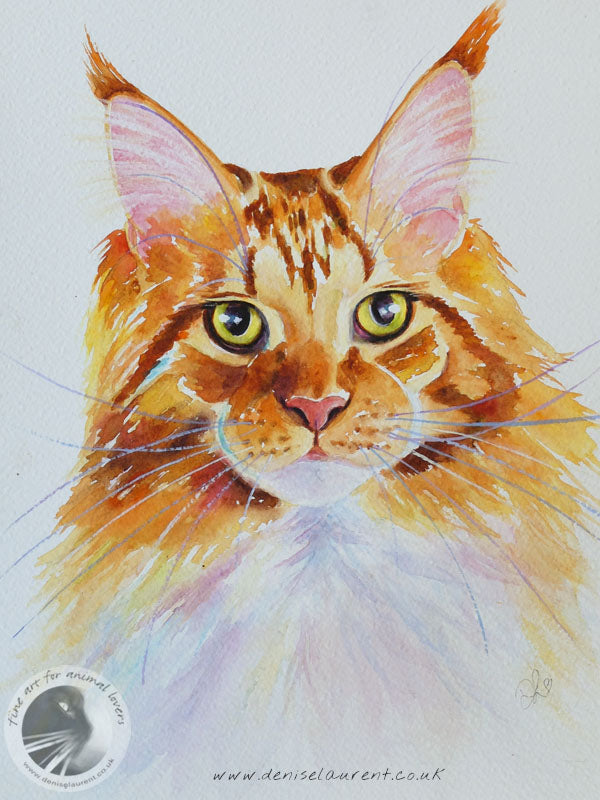 Flynn In Watercolour