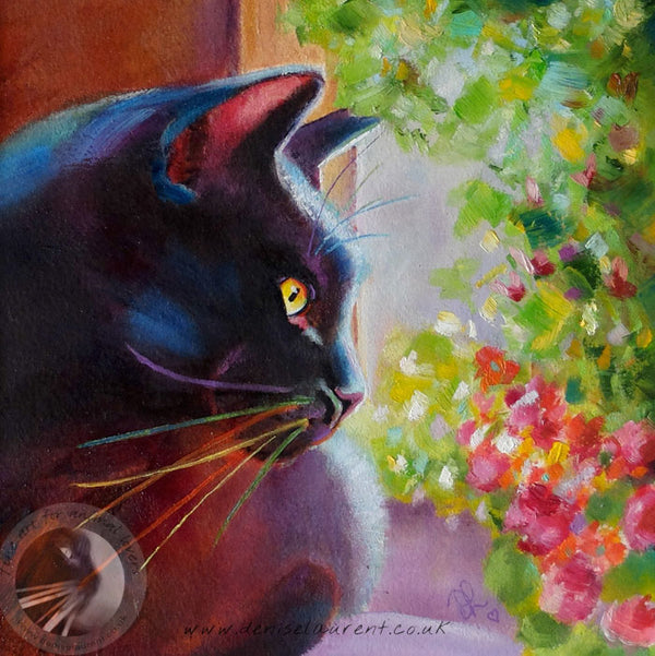 Harry In The Window - 8x8 inch Oil Painting