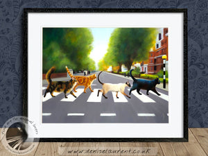 Abbey Road Cats - Cat Print