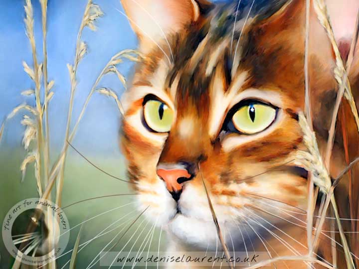 bengal cat in the grass art print