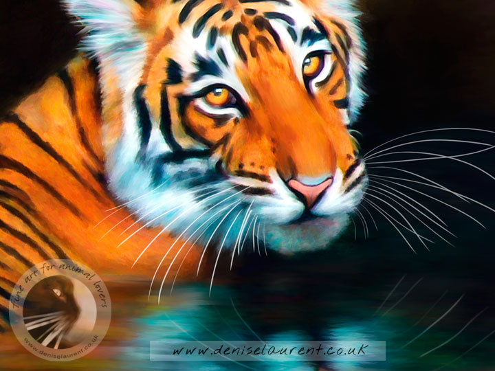Bathing Tiger - Big Cat Print