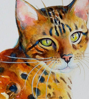 "Bengal Girl - 14""x10"" Watercolour Painting"
