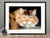 longhaired calico cat artwork framed
