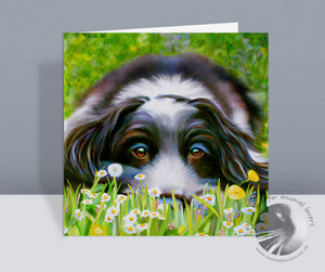 Daisy Daisy Cocker Spaniel Card