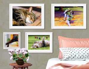 tabby cat art prints and paintings on the wall