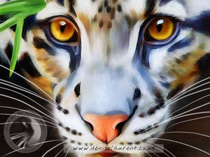 Clouded Leopard - Big Cat Print