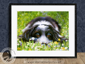 Daisy Daisy - Cocker Spaniel Dog Print