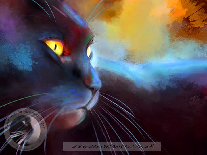 colourful black cat art print