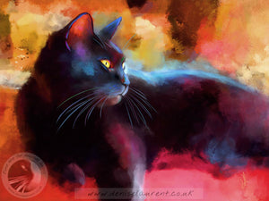 Day Dreamer - Black Cat Print